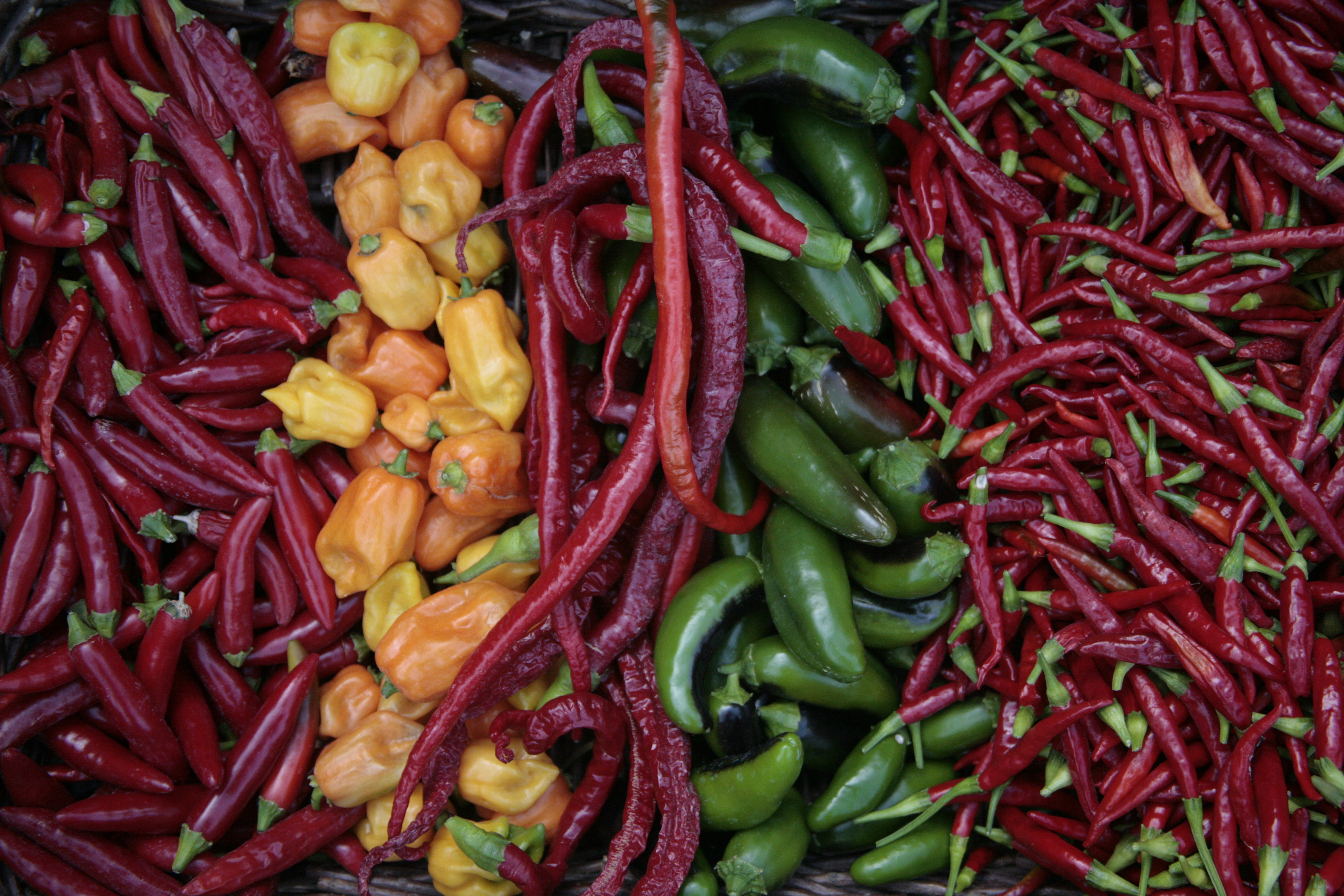 How To Preserve A Whole Season Of Hot Peppers With ...