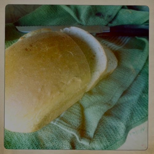 Whole Wheat Sandwich Bread, from Grow it Cook it Can it