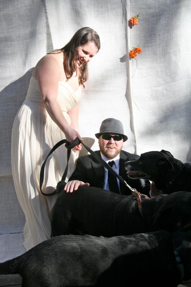 wedding dog portrait