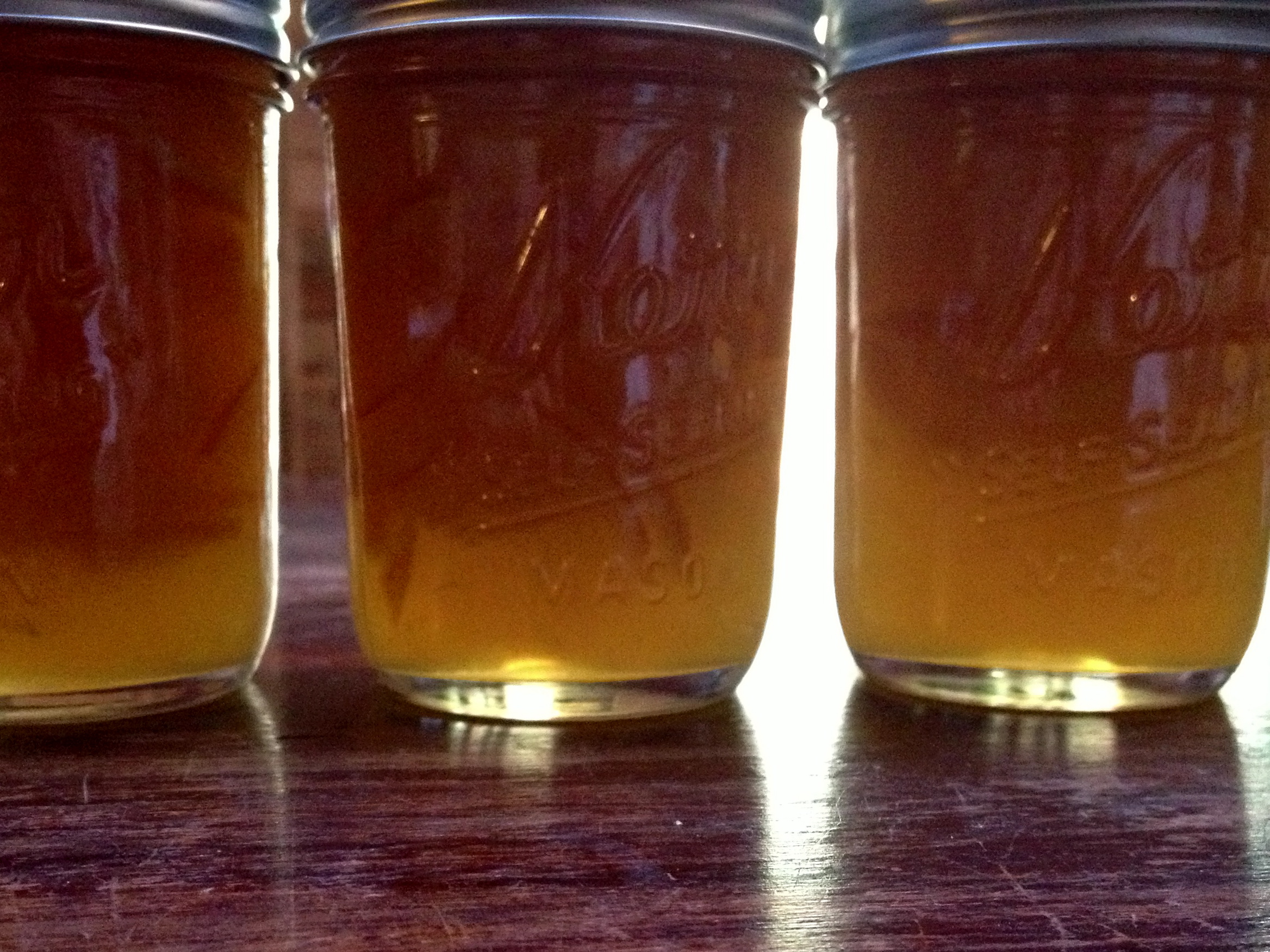 Small Batch Meyer Lemon Marmalade | grow it cook it can it